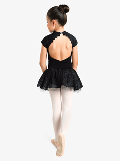 Girls Embroidered Mesh Short Sleeve Ballet Tutu Dress